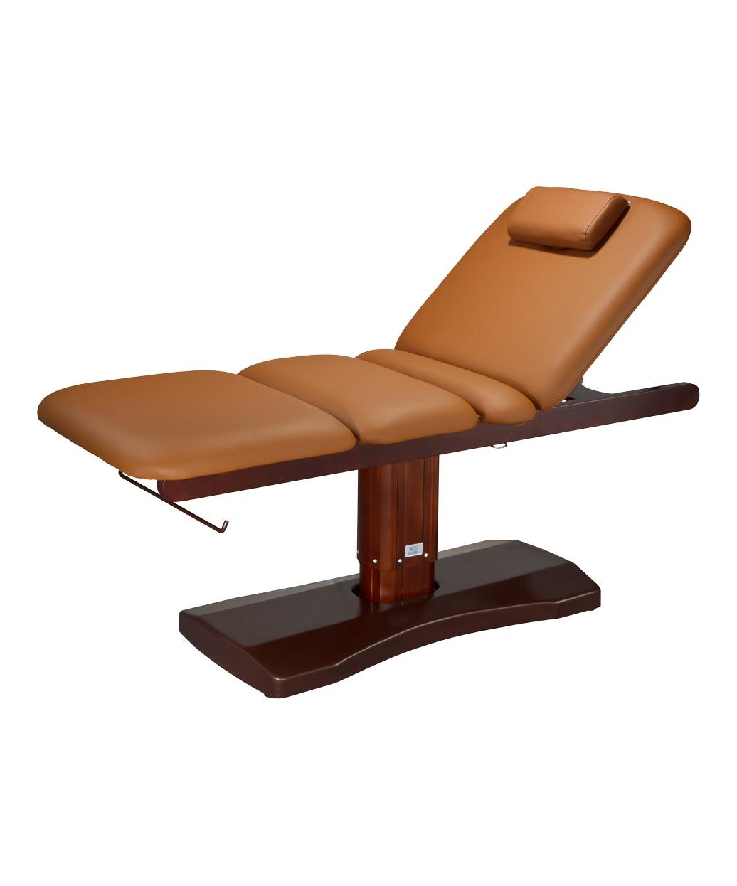 Ceda 2238TB Multi Purpose Electric Facial & Massage Bed