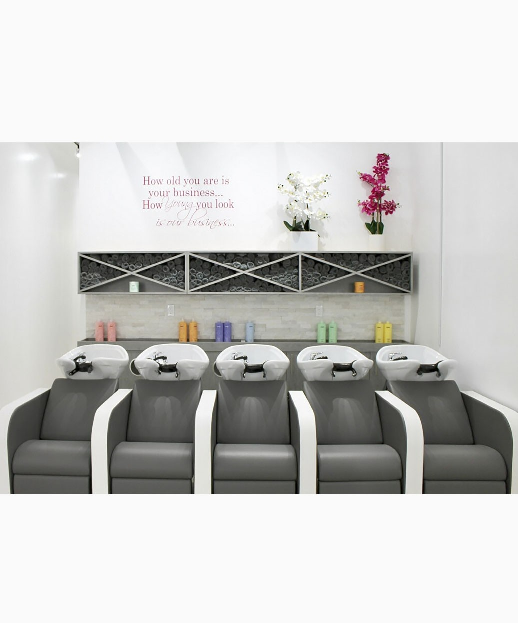 Salon Ambience Iconwash Double Backwash Unit